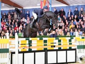euro-stallions-baloutaire